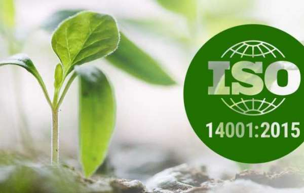 How to demonstrate leadership according to ISO 14001:2015